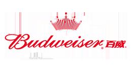 百威啤酒 世界知名啤酒品牌
